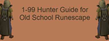 1 to 99 OSRS Hunter Training Guide 2020